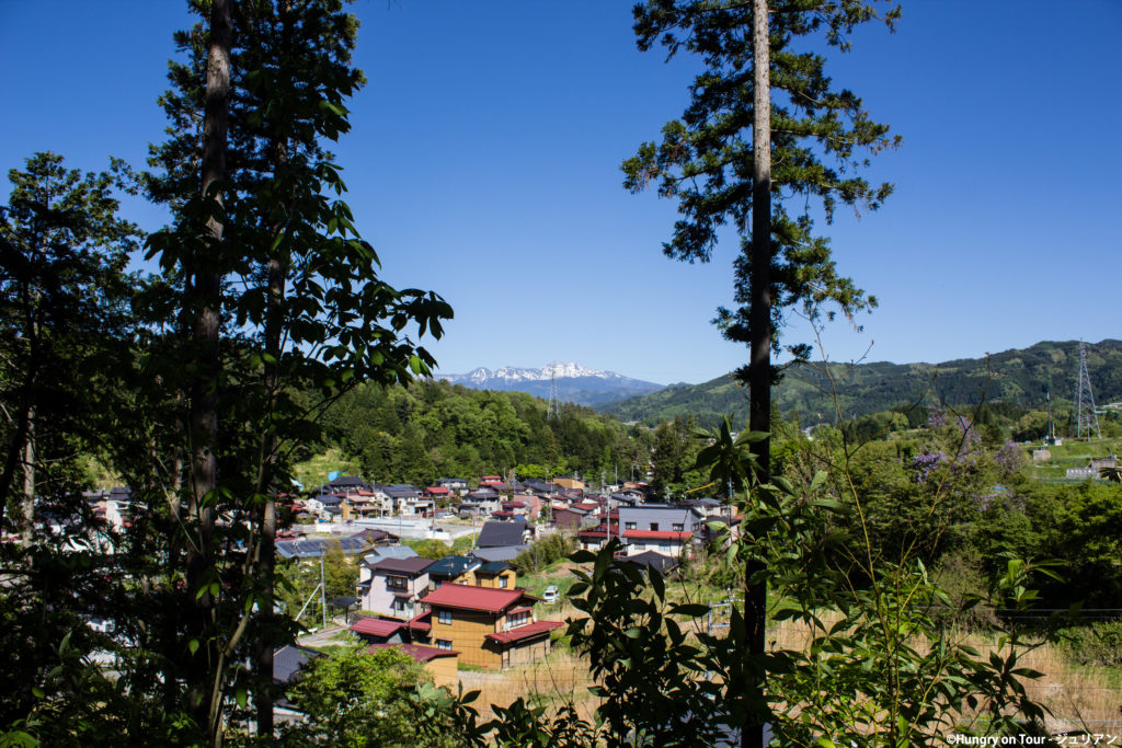 View from Shiroyama Park